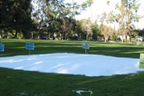 Snow Play Area
